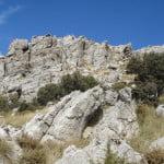 habitat---rockscape