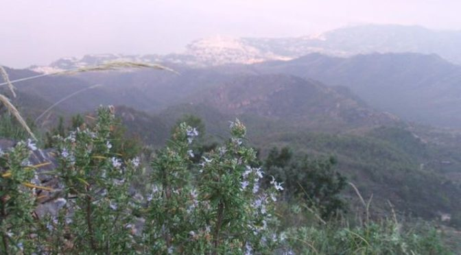 Friday 13th November, climbed 2 peaks with friend Martin: El Cielo (1501 m) and …
