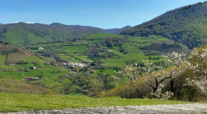 Pyrenean Experience updated their cover photo.