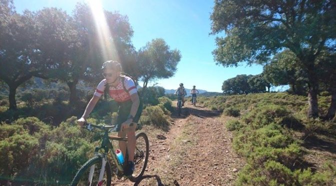 Autumn is a great time to ride here in the Serrania de Ronda and Naturl Parks of…