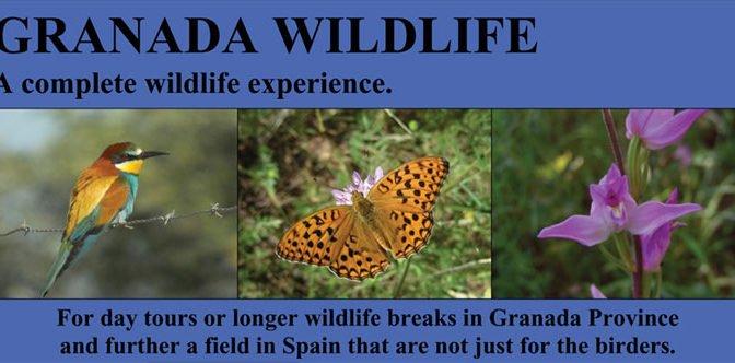 Granada wildlife with Mich Richardson