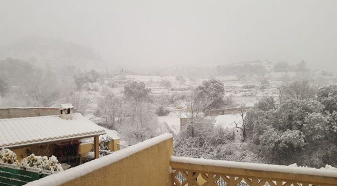 A very different scene in the mountains of Alicante this morning. The view from …