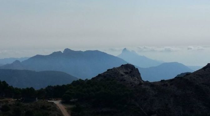 More photos from today's outing up the Sierra Serrella.  #mountainwalks