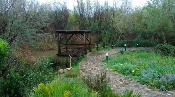 Aljilbe botanic garden in Alcala de los Gazules