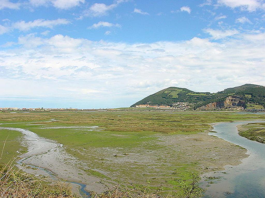 Marismas de Santoña, Victoria y Joyel Natural Park
