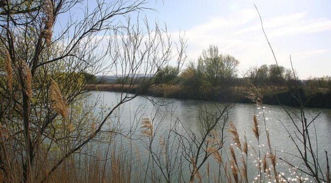 Reserva Natural de los Galachos de la Alfranca de Pastriz La Cartuja y El Burgo de Ebro