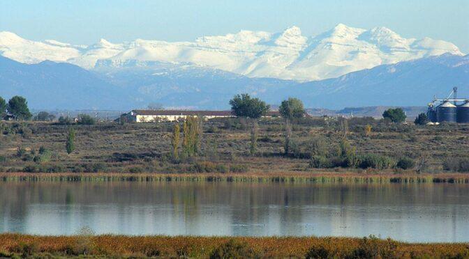 The Refugio de Fauna Silvestre de la Laguna de Sariñena