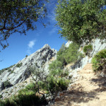 view---mountain-path
