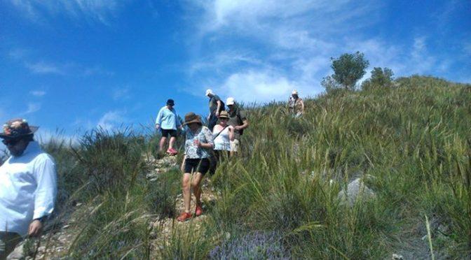 Our walk today to Cerro Felix from Casa Dona Angela, Frigiliana