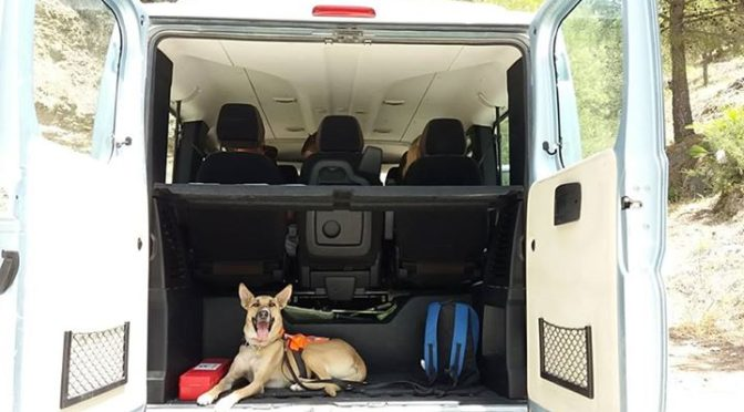 Ingredients for a good hike.  Transport. Check  Rucksack. Check  Dog. Check