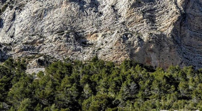 The incredible rocky landscape of Col de Llam. We visit this on our guided walks…