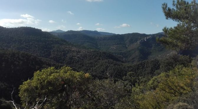 Hike Pyrenees added 7 new photos.