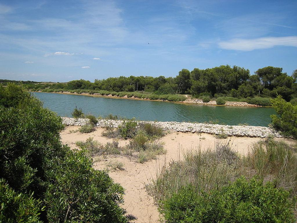 Albufera natural park - Valencia