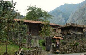 Bear house Somiedo