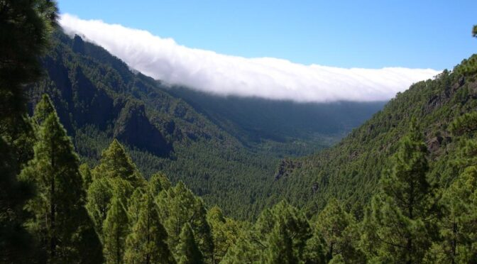 National parks in the Canary Islands