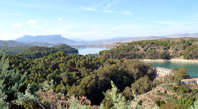 Although, strictly speaking, the Natural Reserve only included the Gaitanejo River Dam, we would be unable to understand the dynamics and complexity of the open area without the river dams that surround it which are the Conde de Guadalhorce, Guadalteba, Guadalhorce y Tajo de La Encantada), that make up, as a whole, one of the most important hydraulic complexes in Andalucia.