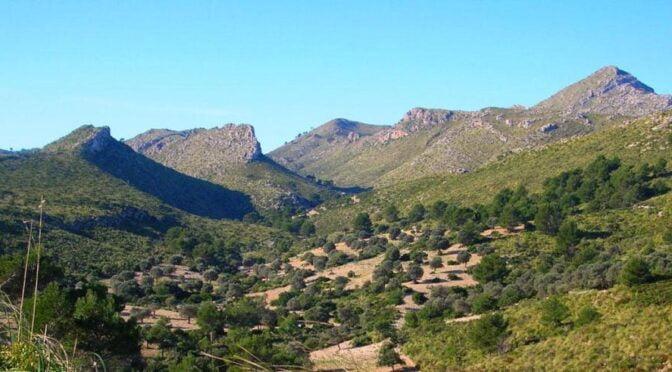 Península del Llevant Natural Park