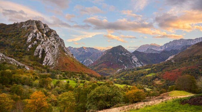 Ponga Natural Park is located in the central-eastern area of the Cantabrian Mountains entirerly within the environs of the town of its namesake Ponga.