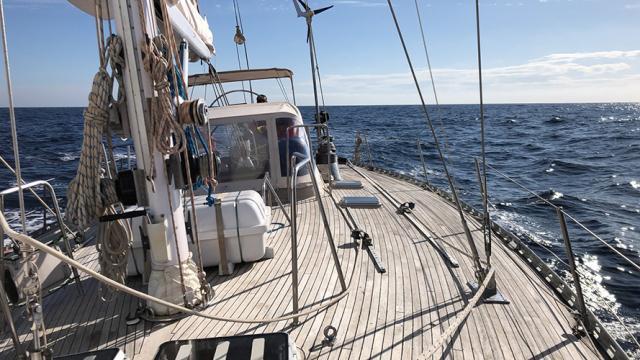 Sailing with the Macronesia Wildlife Adventure