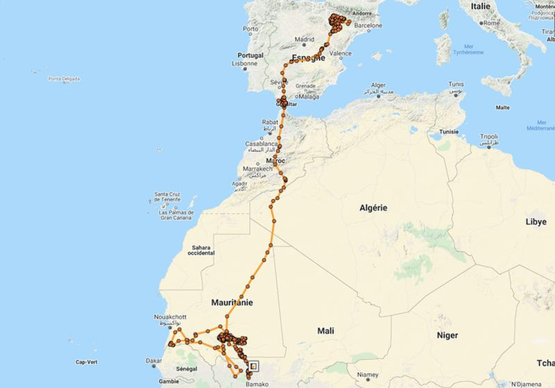 Map of the Egyptian vultures migration route