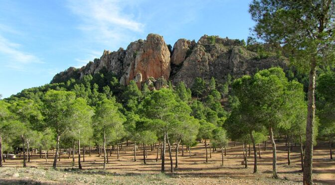 "Due to its proximity to Murcia, the Carrascoy y El Valle Regional Park (Parque Regional Carrascoy y El Valle) constitutes the main ""green lung"" of the capital"