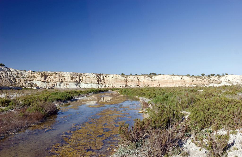 Protected landscapes (Paisajes protegidos) - Humedal del Ajauque y Rambla Salada