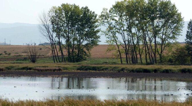 Lagoons and wetlands in La Rioja
