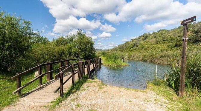 Marjal de Pego-Oliva Natural Park
