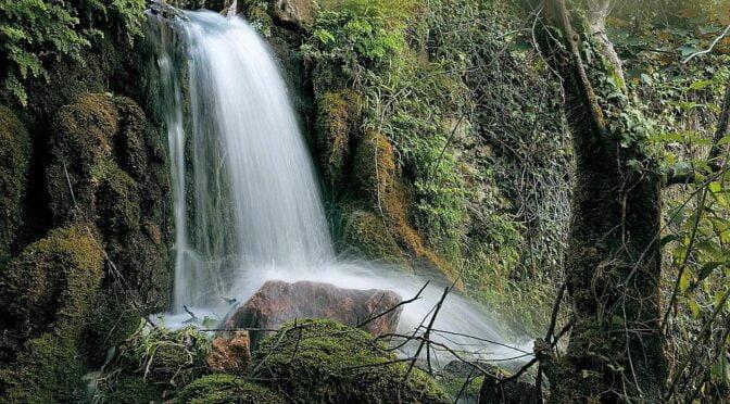 Pagoeta Natural Park