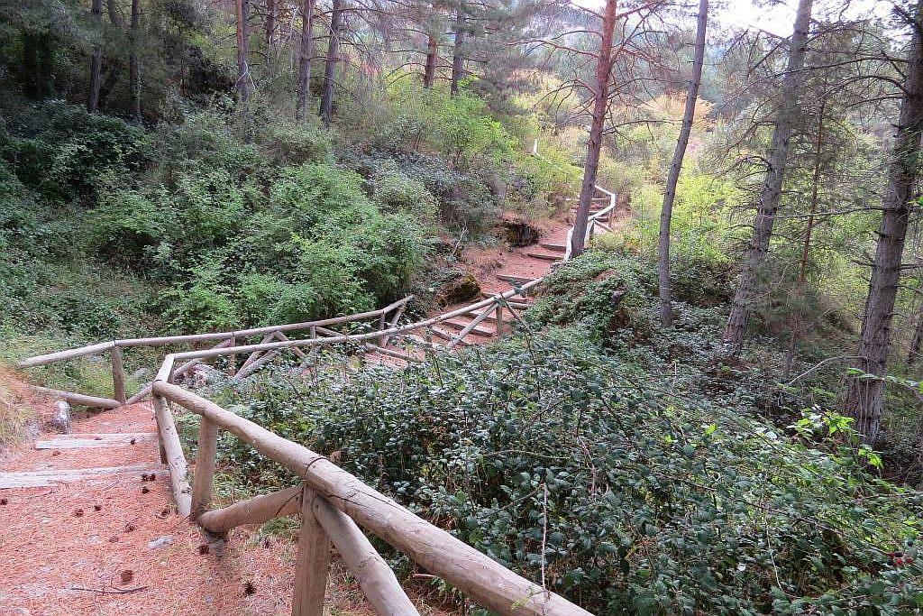 Hoya de Pedraza and La Cortijuela botanic gardens